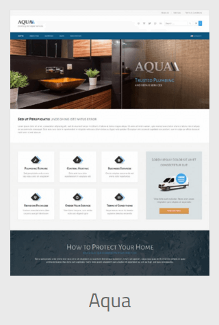 website development - aqua - Website Development