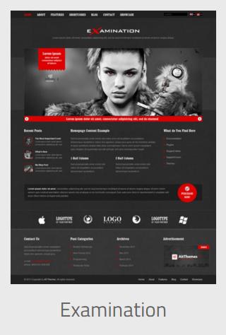 website development - examination - Website Development