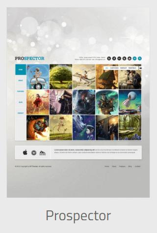 Website Development - prospector - Website Development